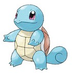 mediumsquirtle